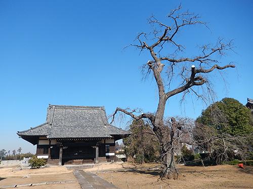天台宗西林寺