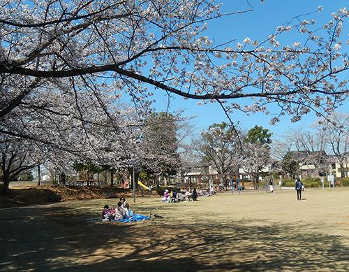 けやき台公園01