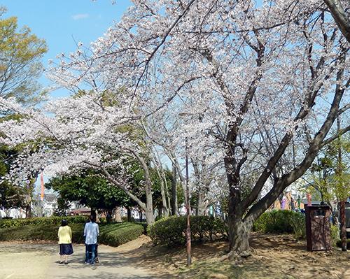 けやき台公園04