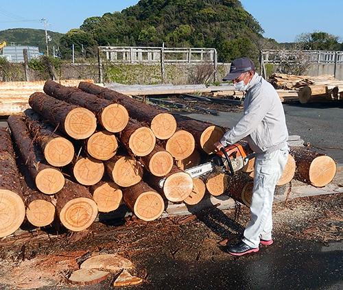 日置川産樹齢100年生超ヒノキ09