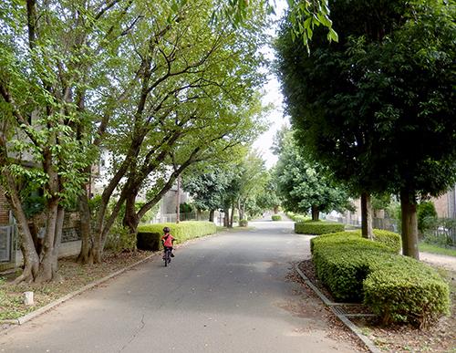 けやき台の遊歩道